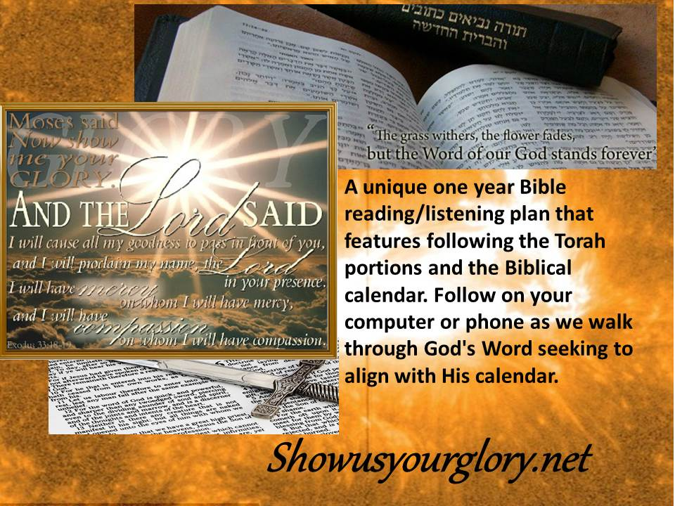 Show us your glory - one year Bible reading/listening plan